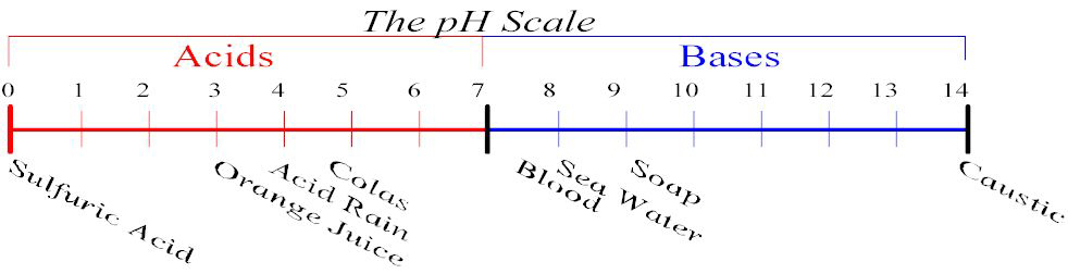 pH Scale 0-14. A pH value <7 represents and acid while a pH > 7 is a base